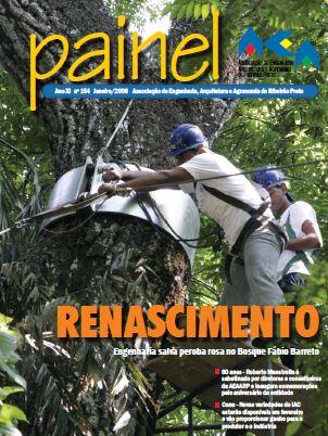 Painel 155 – janeiro de 2008
