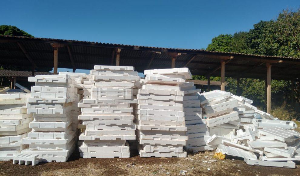 Coleta de EPS já armazena cerca de 4 toneladas