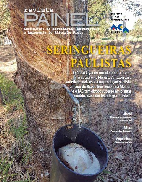 Painel 306 – setembro de 2020